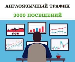 Англоязычный трафик – 3000 посещений