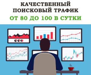 Качественный поисковый трафик от 80 до 100 в сутки на 30 дней