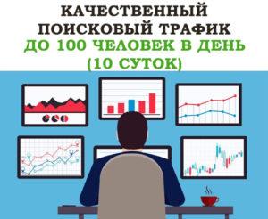 Качественный поисковый трафик от 20 до 100 человек в день (10 суток)